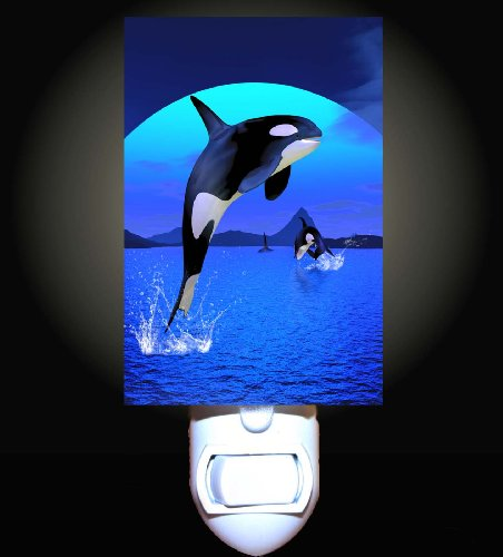 Orca Splash Decorative Night Light