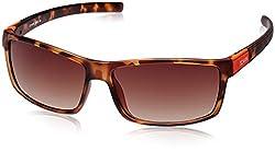 Scavin  Wayfarer Sunglasses (Brown) (215S903DEMI|60)