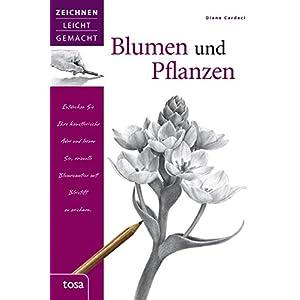 Blumen und Pflanzen: Zeichnen leicht gemacht