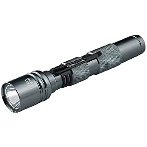 ELPA(エルパ) 0.5W LEDライト 単3×2本 ガンメタル DOP-092MG