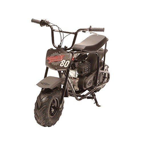 MM-B80 Youth Mini Bike (Black) (Cheap Mini Dirt Bikes compare prices)