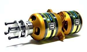 AXI Modell Motors Gold Double 5330/20 RC Hobby Outrunner Brushless Motor OM530 mit RCECHO Vollversion Apps Ausgabe