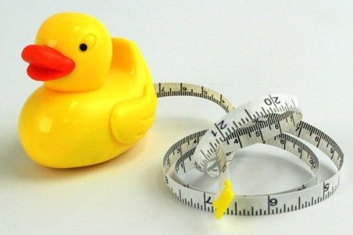 Duck Tape Duck Shaped Tape Measure