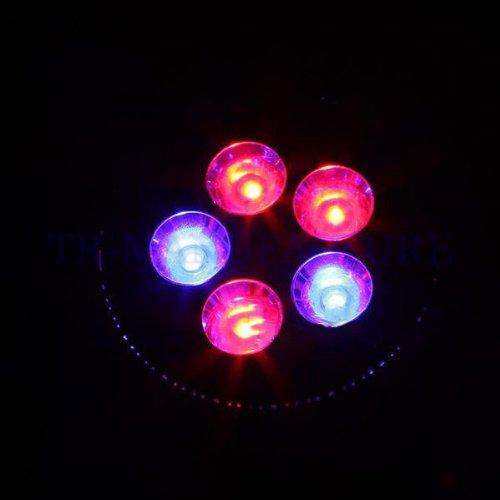 Aparche E27 5W Led Plant Grow Light Lamp Growing Hydroponic 85~265V 3Red+2Blue Par38