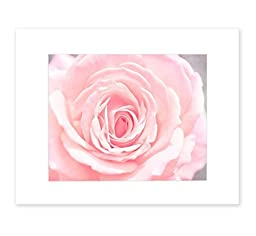 8x10 Matted Print, Pink Rose Flower Wall Art, \'Pink and Shabby\'