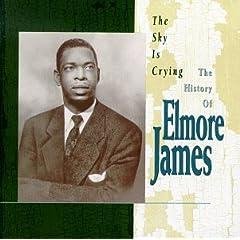 Elmore James - Page 2 418FQ5123XL._SL500_AA240_