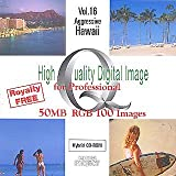 High Quality Digital Image for Professional Vol.16 Aggressive Hawaii