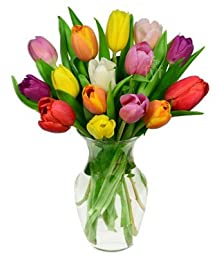 From You Flowers - Rainbow Tulip Bouquet - 15 Stems (FREE Vase Included)