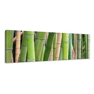 Visario 5705 - Fotografía sobre lienzo (120 x 40 cm), diseño de bambú marca Visario - BebeHogar.com