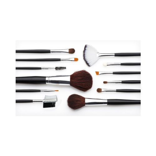 Details for 13 Piece Makeup Brush Set and Case by the brush Company
