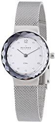 Skagen End-of-Season Classic Analog Silver Dial Womens Watch - 456SSS