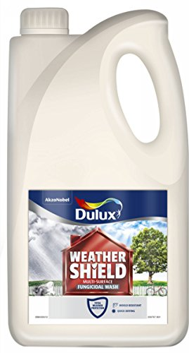 dulux-weather-shield-multi-surface-fungicidal-wash-paint-750-ml-clear