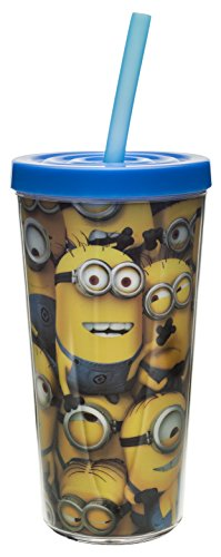 Zak! Designs Insulated Tumbler with Screw-on Lid and Straw with Despicable Me 2 Minions Graphics, BPA-free Plastic, 16-ounce