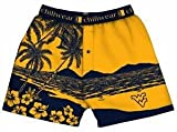 West Virginia Chiliwear Boxer