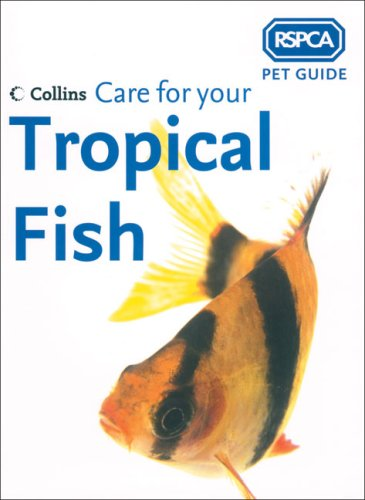 rspca-pet-guide-care-for-your-tropical-fish