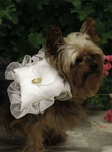 Beverly Clark Dog Ring Pillow White Small Canine Wedding Apparel Ceremony Furry Friends Collection front-728743