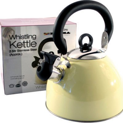 Retro Whistling Kettle. Classic Stainless Steel Cream Kettle. Ideal for using in a power cut, just like in the 70s! Great for camping, too.