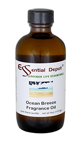 Ocean Breeze Fragrance Oil - 4 oz. (Ocean Breeze Scent compare prices)
