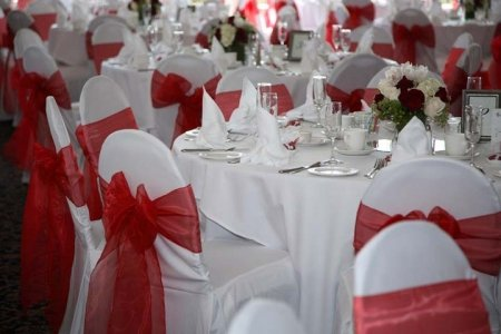 Spring Rose(TM) White Polyester Standard Round Top Banquet Wedding Chair Covers (set of 10). Chair Sash is Not Included.