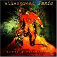 Widespread Panic Hope In A Hopeless World