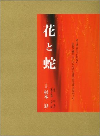 杉本彩の画像 p1_3