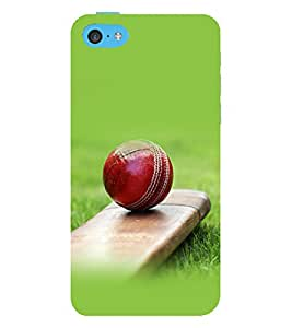 printtech Bat Ball Cricket Back Case Cover for Apple iPhone 5C