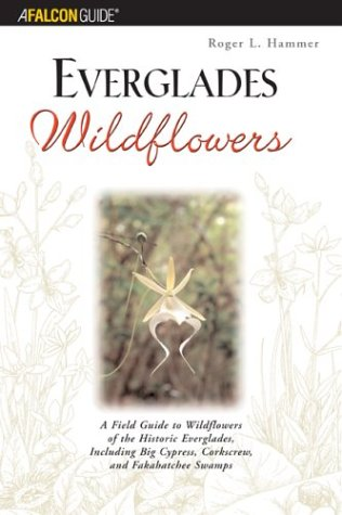 Everglades Wildflowers