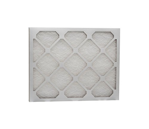 Eco-Aire D50S.012324 MERV 6 Fiberglass Air Filter, 23 x 24 x 1""