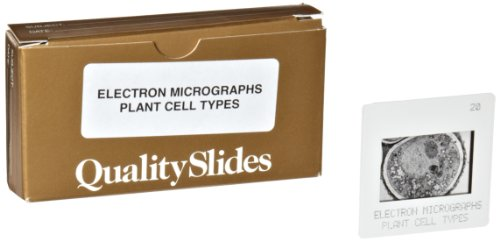 Hubbard Scientific Cell Electron Micrograph Slides - Plant (Set Of 20)
