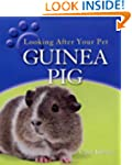 Guinea Pig (Looking After Your Pet)