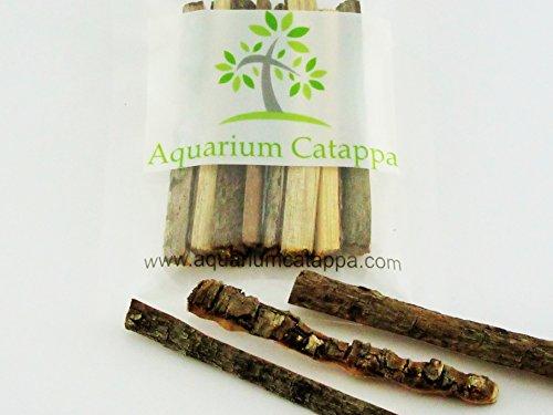 Aquarium Catappa Nano Bark Strips x 8
