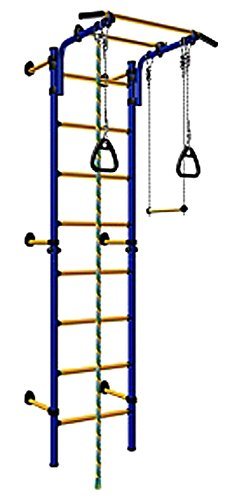 Wall-Mounted-Kids-Indoor-Playground-Training-Gym-Sport-Set-with-Trapeze-Bar-Swing-Climber-Climbing-Rope-Jump-Rope-Gymnastic-Rings-Suit-for-Backyard-School-and-Playroom-Comet-Next-1-Blue