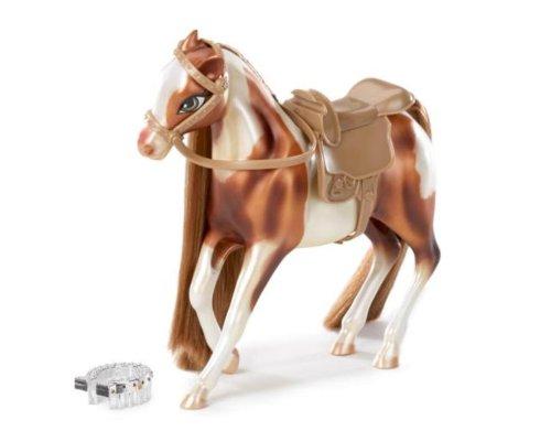 Horseback Fun Horse American Paint Bellefire