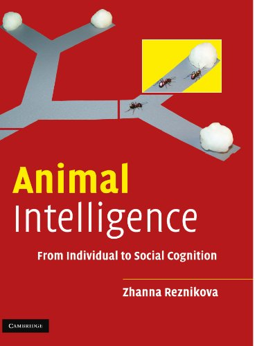 Animal Intelligence Paperback: From Individual to Social Cognition