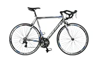 Viking Tre-Valli, 24 Speed, 700c Wheel Bike, Platinum Grey by Viking