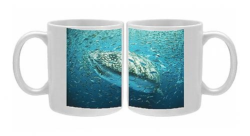 Photo Mug Of Whale Shark - In Bait Ball