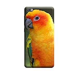 iShell Premium Printed Mobile Back Case Cover With Full protection For Xiaomi Mi5 (Designer Case)