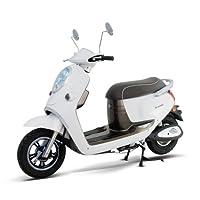電動バイク ecolu MG ホワイト シールドバッテリー モニターモデル MG-WH-M