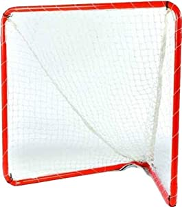 Brine Lacrosse Indoor Box Goal, 1.5-Inch Frame 2.5-mm Net 140B, Net Included (4 x... by Brine