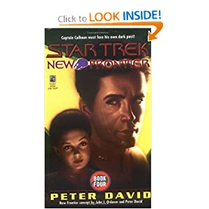 End Game (Star Trek New Frontier, No 4) by Peter David