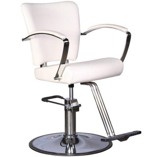 Cheap Salon Chairs 250