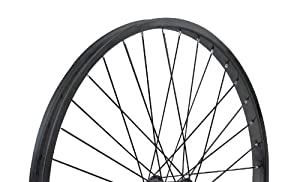 Nirve Rear Cruiser Bike Wheel (Black, 26 x 1.75, 1-Speed Coaster Brake 14g x 36h)