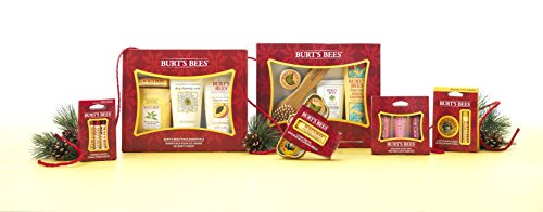 Burt's Bees Endless Shine Trio Holiday Gift Set, 3 Lip Glosses in Gift Box