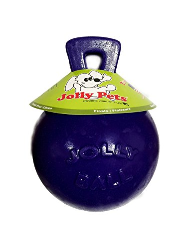 "Tug-N-Toss Ball Color: Purple, Size: 8"" H x 6"" W x 6"" D"