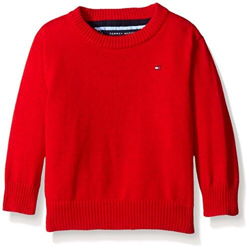 Tommy Hilfiger Baby Boys' Long Sleeve Alan Crew Neck Sweater, Bulls Eye, 24 Months
