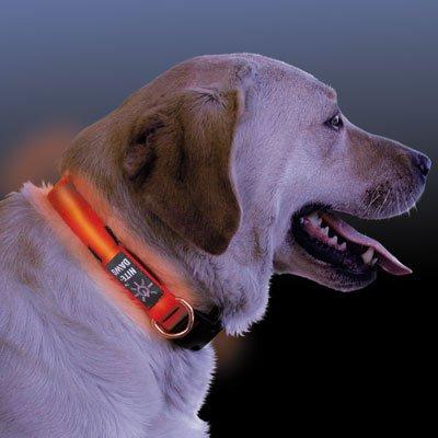 LED Hundehalsband mit Lichtleitertech., rot,Gr. M,33-46cm
