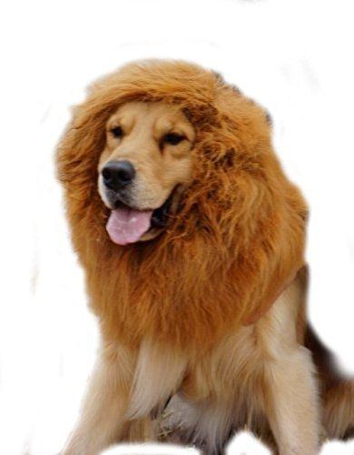 SpeedControl Super Cool Large Pet Dog Cat Lion Wigs Mane Hair Festival Party Fancy Dress Clothes Costume Color (Underdog Dog Costume)