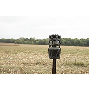 Wildgame Innovations 360 Camera, Bark