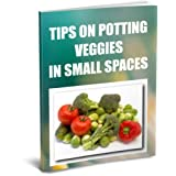 Tips On Potting Veggies In Small Spaces