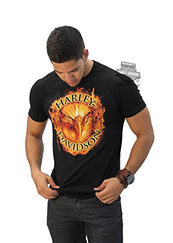 Harley-Davidson Mens Determination Flaming Eagle Black Short Sleeve T-Shirt - 2X